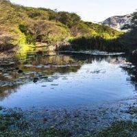 Bosque Cañoncillo, un oasis ideal para deportes de aventura