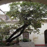 Casona de Castilla y Zamora en Ayacucho