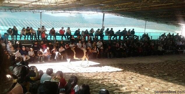 """La Colpa, la hacienda del """"llamado de las vacas"""" en Cajamarca"""