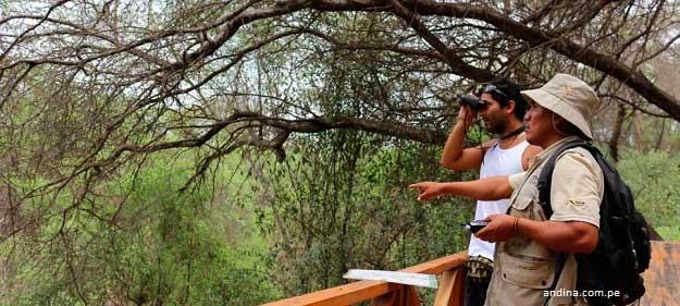 Imagen de turista acompañado de guia en tour privado, en algún lugar de Lambayeque (andina.com.pe)