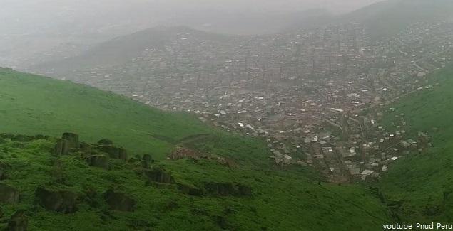 Recorra el circuito turístico de las Lomas de Amancaes en Lima