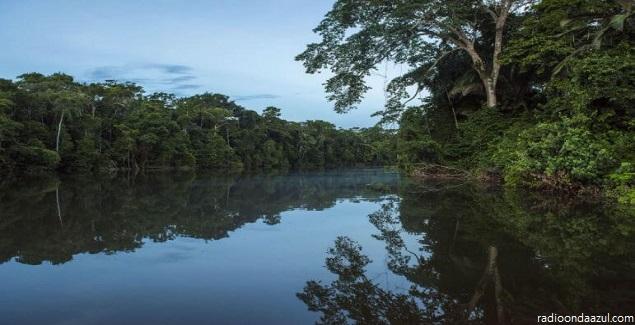 Parque Nacional Bahuaja-Sonene, una isla en medio del bosque